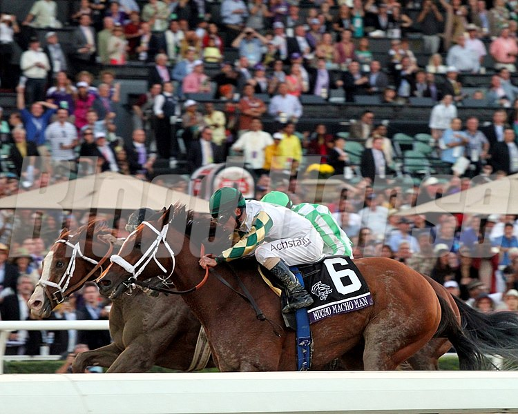 Mucho Macho Man (Inside) with Gary Stevens up, beats Will Take Charge (outside) with Luis Saez up and Declaration Of War (middle) with Joseph O'Brien up, in the Breeders' Cup Classic.