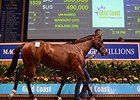 Manduro Filly Tops Day One at Magic Millions