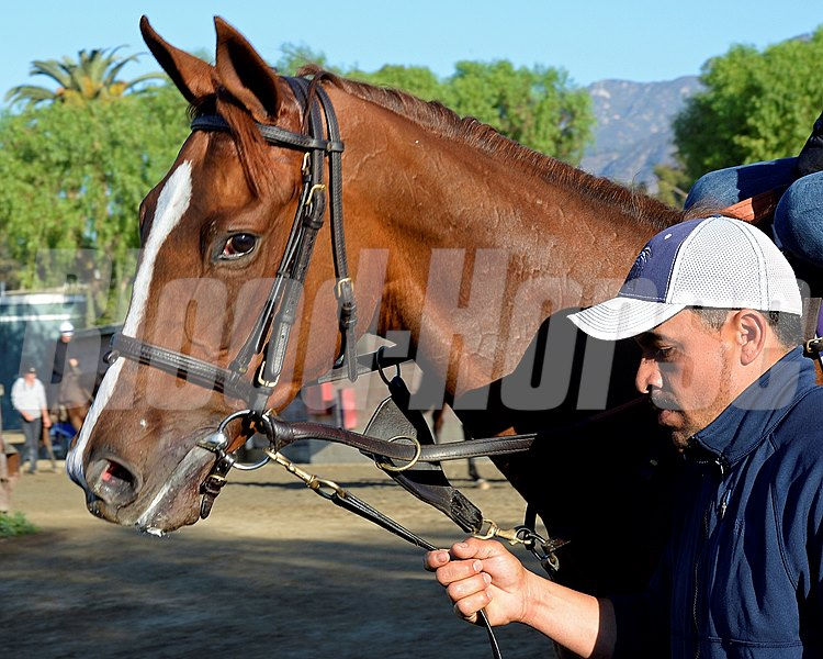 Caption:  Partisan Politics