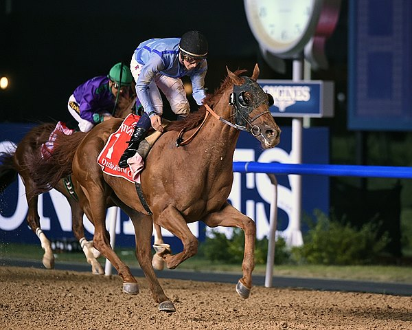 After finishing a close second in a pair of group stakes on the dirt at Meydan, Sheikh Hamdan bin Mohammed Al Maktoum's Prince Bishop picked a good day to deliver his best, as he overpowered a pair of U.S.-based grade I winners to post a 2 3/4-length victory in the $10 million Dubai World Cup.