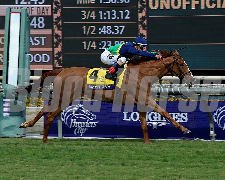 Dayatthespa, with Javier Castellano, wins the Breeders' Cup Filly & Mare Turf (gr. I).