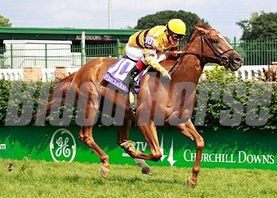 Wise Dan and jockey Jon Court cruised to victory in the 21st running of the $150,000 Firecracker Handicap (gr. IIT) in 2011.