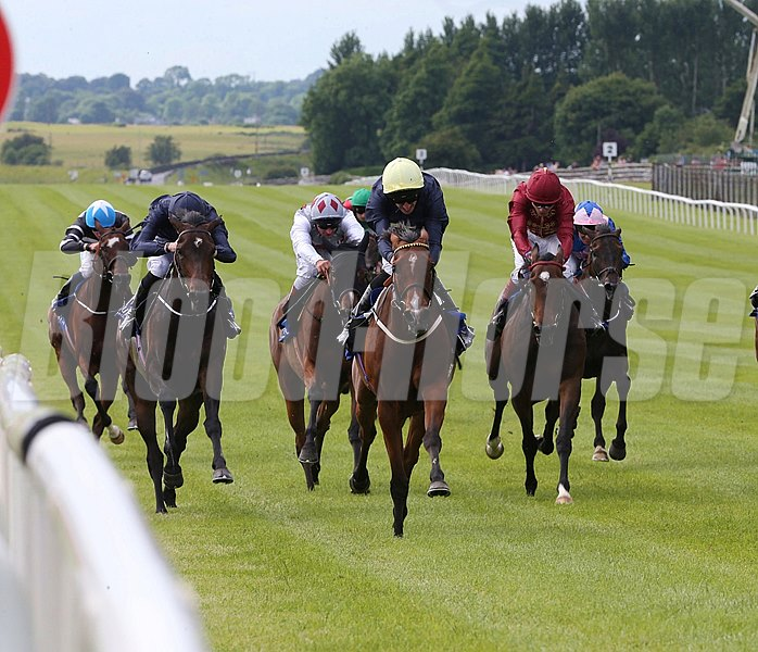 Thistle Bird struck for her first top-level win at age 6 when overtaking front-runner Venus de Milo in the final furlong to capture the Pretty Polly Stakes (Ire-I) at the Curragh in Ireland.