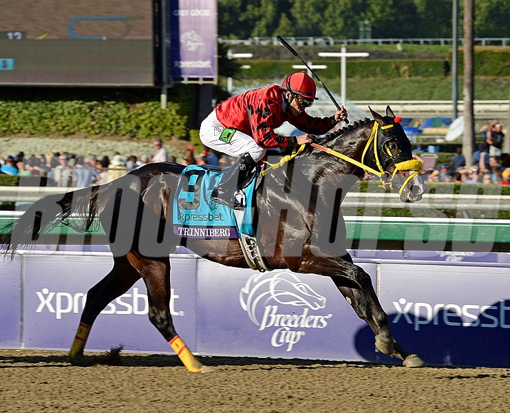 Caption: Trinniberg with Willie Martinez wins the XpressBet Sprint