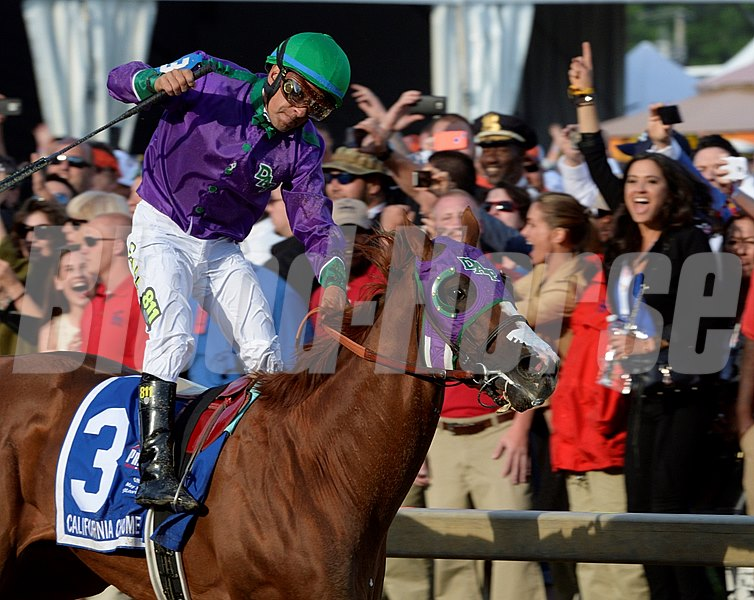 Jockey Victor Espinoza jumps up in saddle after guiding California Chrome to the win in the second leg of Thoroughbred racing's Triple Crown.