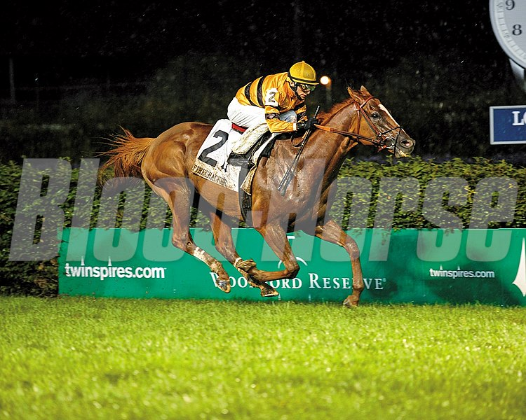 Horse of the Year Wise Dan with jockey John Velazquez on their way in the pouring rain to win the Grade II Firecracker Handicap at Churchill Downs.