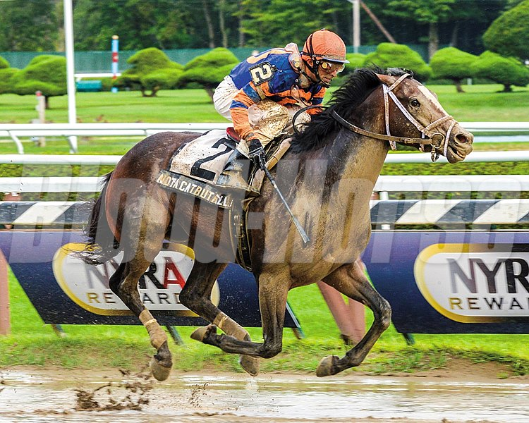 Notacatbutallama and jockey John Velazquez wins the Grade II National Museum of Racing Hall of Fame Stakes at Saratoga.