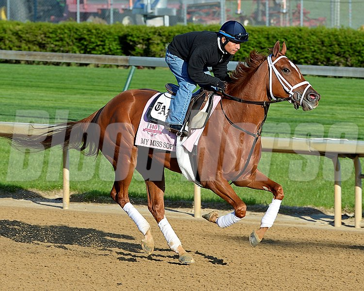 Caption: My Miss Sophia with Humberto Zmora