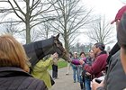 Rachel Alexandra Fan Day