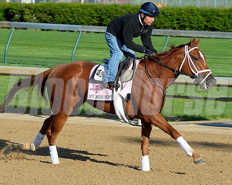 Caption: My Miss Sophia