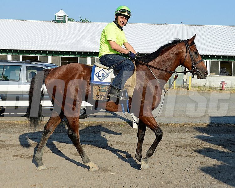 Caption: Kid Cruz walks to barn