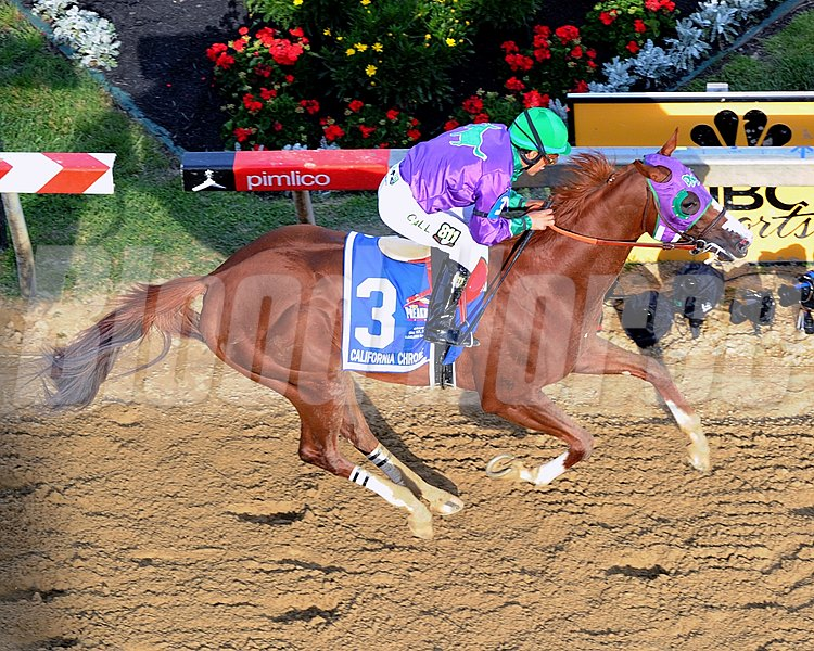California Chrome with Victor Espinoza up in the Preakness Stakes at Pimlico on May 17, 2014.