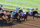 2015 Blue Grass Stakes Race Sequence