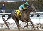 El Kabeir Continues NY Success in Gotham