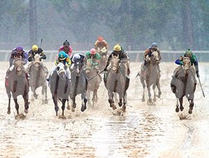 Far Right wins the Southwest Stakes Feb. 22, 2015.