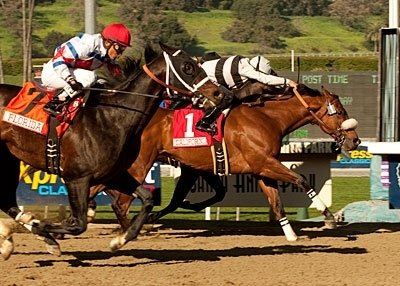 Amazombie, making his stakes debut for trainer Bill Spawr at odds of 11-1, outfought odds-on choice Cost of Freedom in a terrific finish to snatch the $200,000 Sunshine Millions Sprint by a head at Santa Anita Jan. 29.