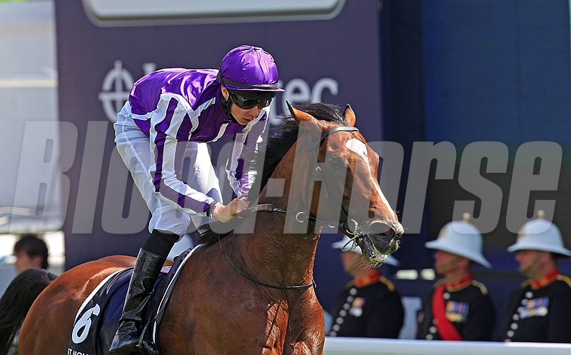 St Nicholas Abbey wins the Coronation Cup at Epsom for the 2nd time 2/6/2012.