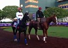 Breeders' Cup: The Fugue
