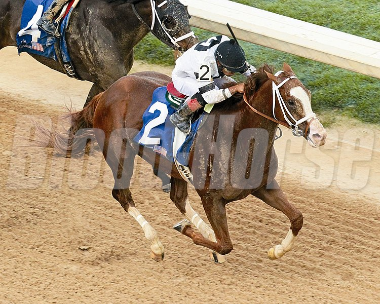 WILL TAKE CHARGE wins the Oaklawn Handicap - Sixty Eighth Running - Grade II at Oaklawn Park   