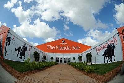 Welcome to Palm Meadows, the new home of the Fasig-Tipton Florida select sale of 2-year-olds in training.