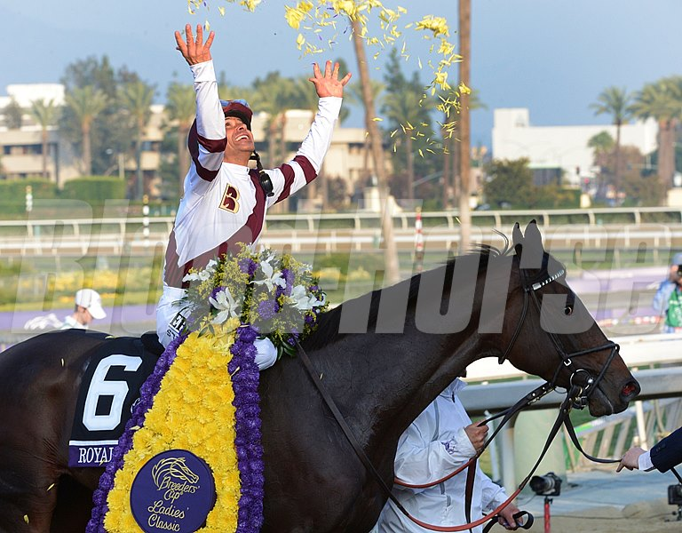 Mike Smith celebrates after Royal Delta wins the Breeders' Cup Distaff (gr. I).