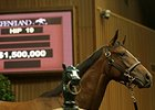 Lively Trade on First Day of Keeneland Sale