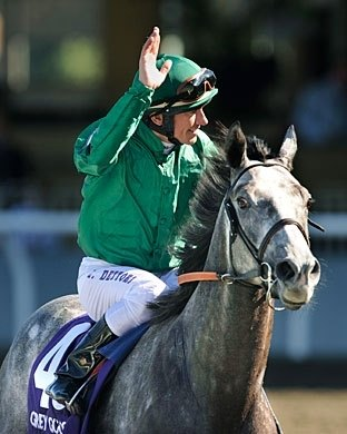 Breeders' Cup Juvenile Turf Winner Donativum; Jockey: Frankie Dettori; Trainer: John Gosden; Owner: H.R.H. Princess Haya of Jordan and Darley Stable; Breeder: Stratford Place Stud.