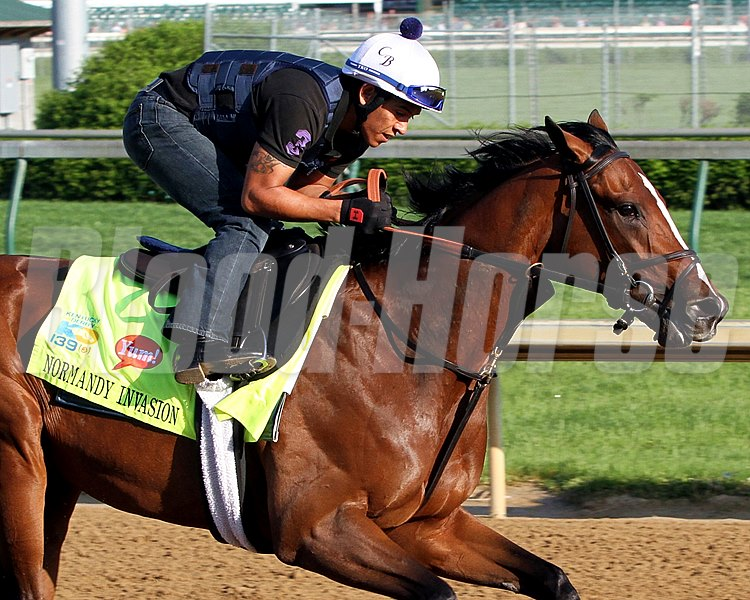 Normandy Invasion on the track at Churchill Downs on May 1, 2013.
