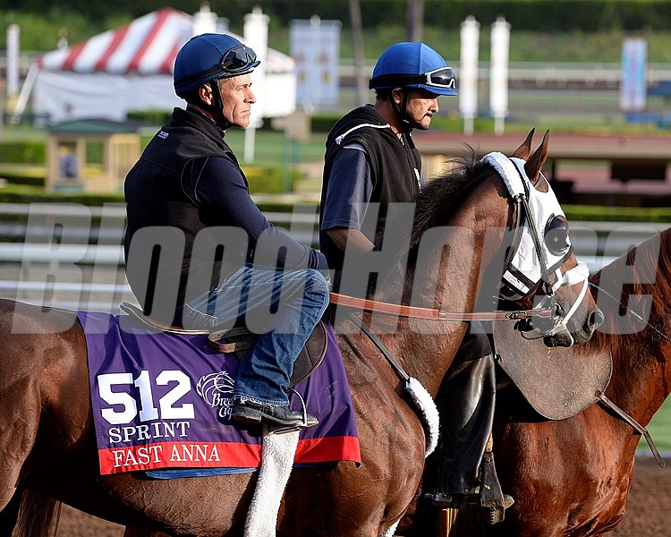 Gary Stevens on Fast Anna Oct. 26, 2014, at Santa Anita in preparation for the Breeders' Cup.