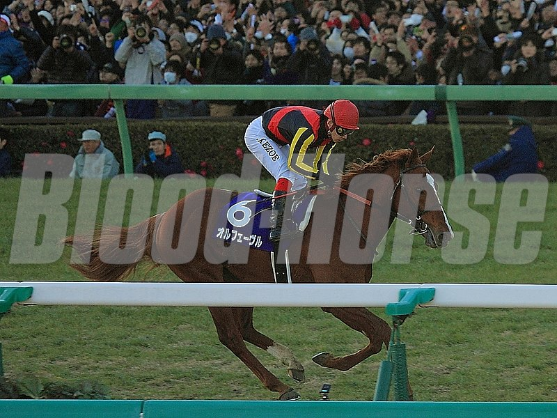 Japanese star Orfevre bowed out of racing in fine style Dec. 22 when winning the Arima Kinen (Jpn-I) by a commanding eight lengths at Nakayama.