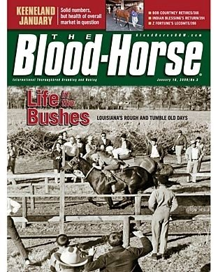 The Blood-Horse: 01/19/2008 issue