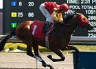 Upgraded Marine Gives Canada 44 Graded Stakes