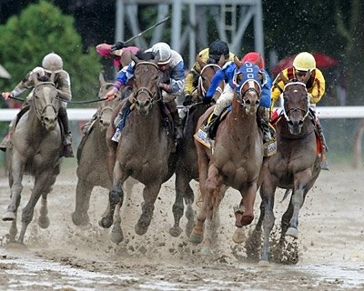 Summer Bird wins the 2009 Shadwell Travers Stakes at Saratoga. Hold Me Back was second; Quality Road was third.