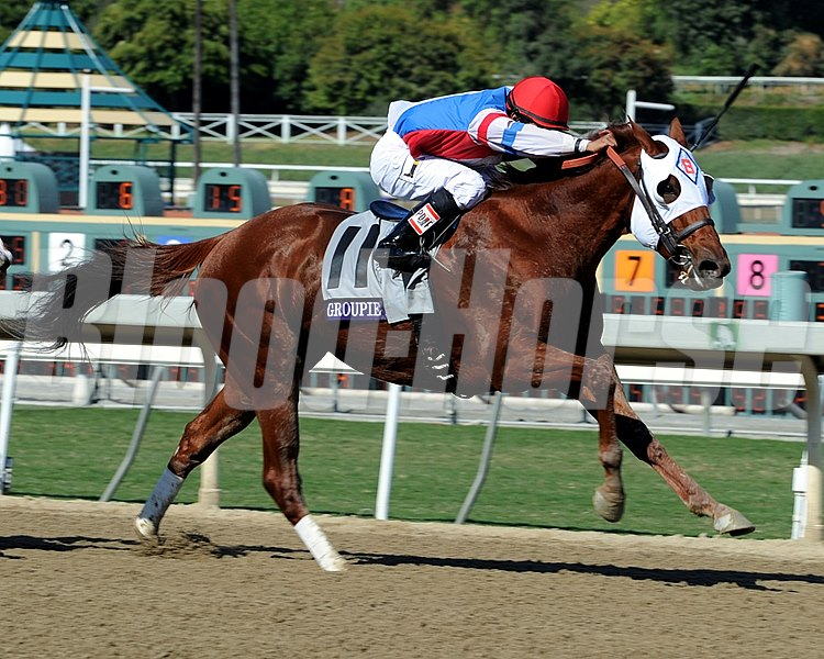 Groupie Doll running in the Breeders' Cup Filly and Mare Sprint.