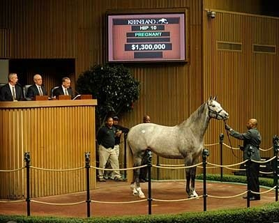Diamond Necklace, Hip 10, was the first to bring more than $1 million