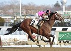Far From Over, El Kabeir Likely for Gotham