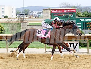Taketheodds wins the 2015 Sugar Maple Stakes.