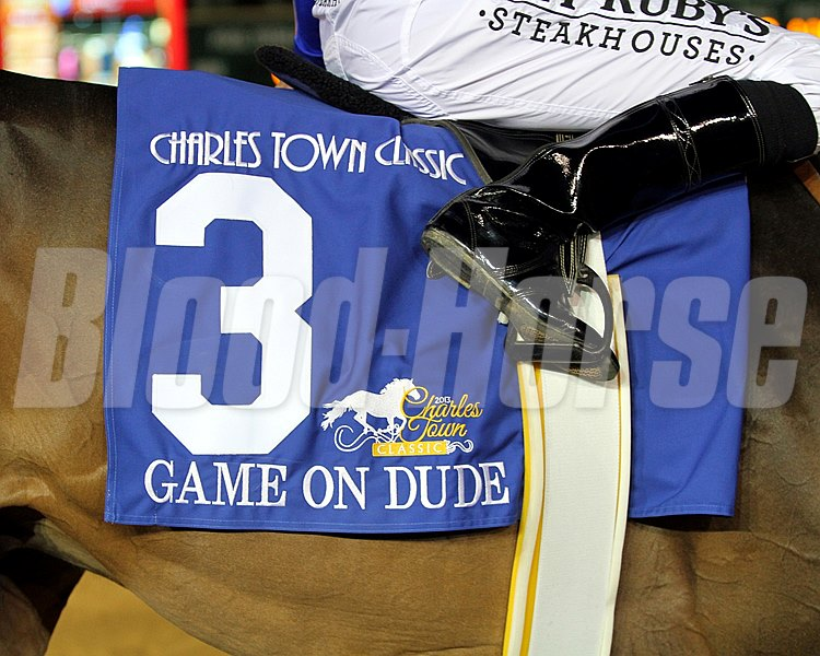 Game On Dude's Saddle Cloth for The 5th Running of the Charles Town Classic (GII) on April 20, 2013.