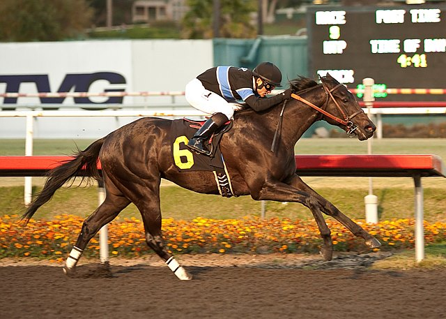 Even-money favorite Shared Belief, ridden patiently by Corey Nakatani, swept past outsider Candy Boy coming into the stretch and easily rolled to his third consecutive victory in the $750,000 Grade I CashCall Futurity at Betfair Hollywood Park in California.