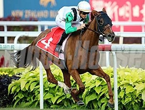 Parranda wins the Singapore Cup Feb. 22, 2015.