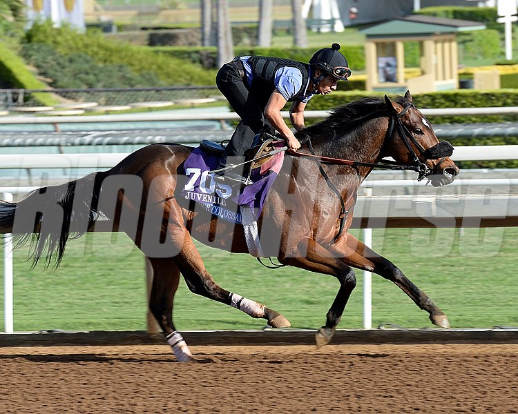 Caption:  Super Colossal