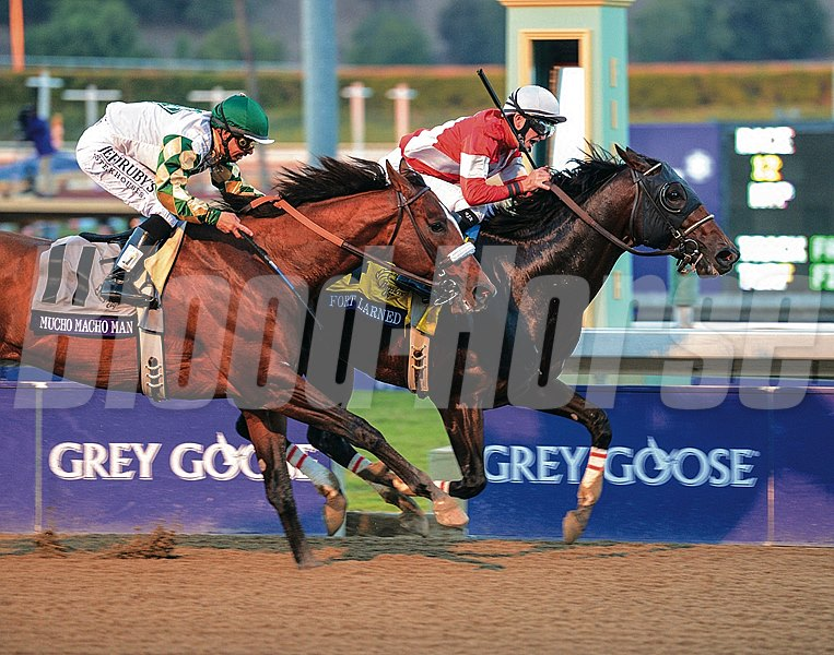 Fort Larned defeates Mucho Macho Man in the Breeders' Cup Classic November 3, 2012.