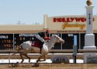 White Thoroughbred Wins at Mahoning Valley