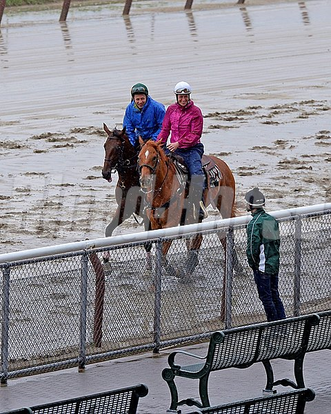 Caption: Samraat with pony on Thursday before Belmont