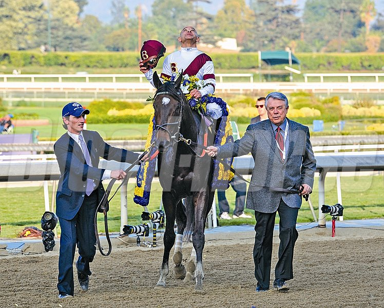 Royal Delta heads to the winner's circle after wining the Breeders' Cup Distaff.