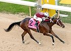 Champion Untapable Formidable in Ogden Phipps