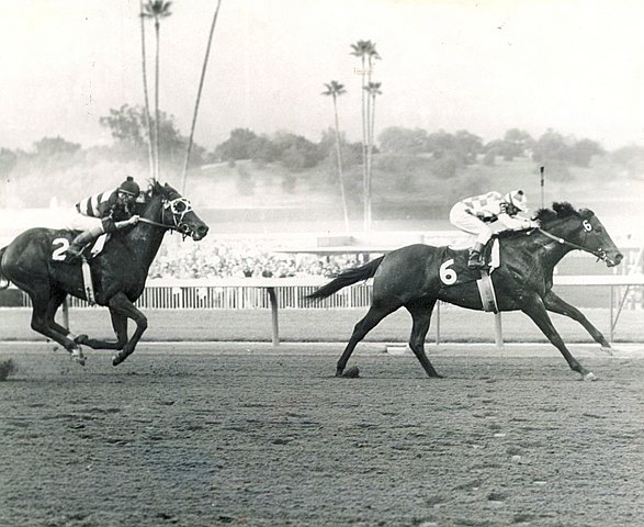 Ack Ack overpowers Jungle Savage to win the 1971 San Carlos Handicap at Santa Anita Park.
