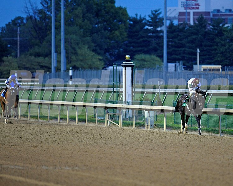 Royal Delta in midstretch has a commanding lead during the 2012 Fleur de Lis (gr. II)  at Churchill Downs on June 16, 2012.