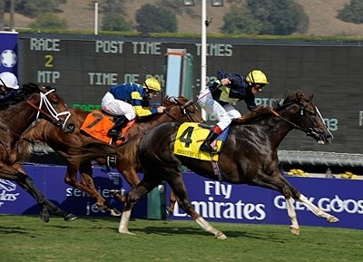 2009 Breeders Cup World Championships Day Two