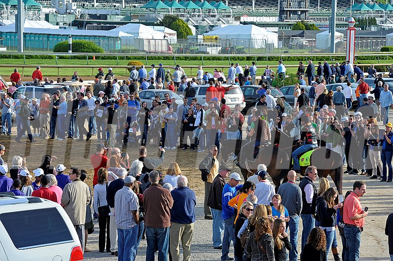 Caption:  Orb goes tot he track
